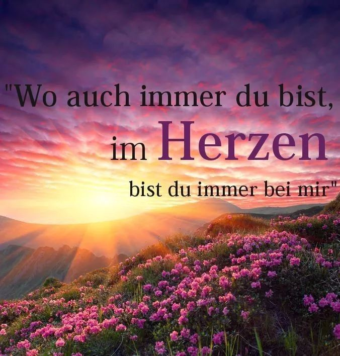 Pin von Heinrich Thoben auf SPRÜCHE/ZITATE | Trauersprüche
