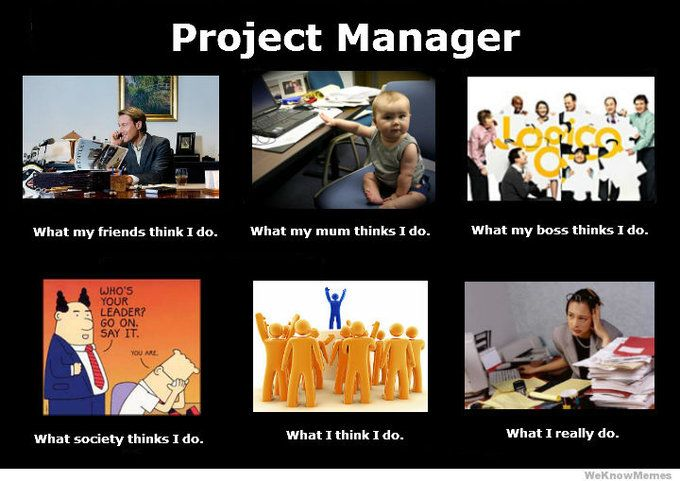 What i really do as a project manager in web industry for Do my project