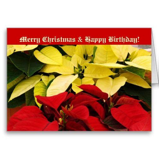 Merry christmas and happy birthday poinsettias greeting card merry christmas and happy birthday poinsettias greeting card bookmarktalkfo Images