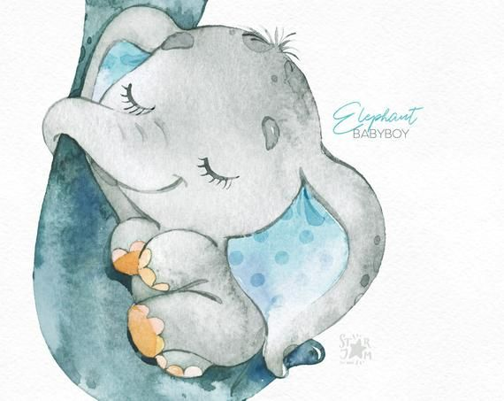 Elephant Babyboy Watercolor Little Animal Clipart Africa Etsy Baby Painting Animal Clipart Baby Elephant