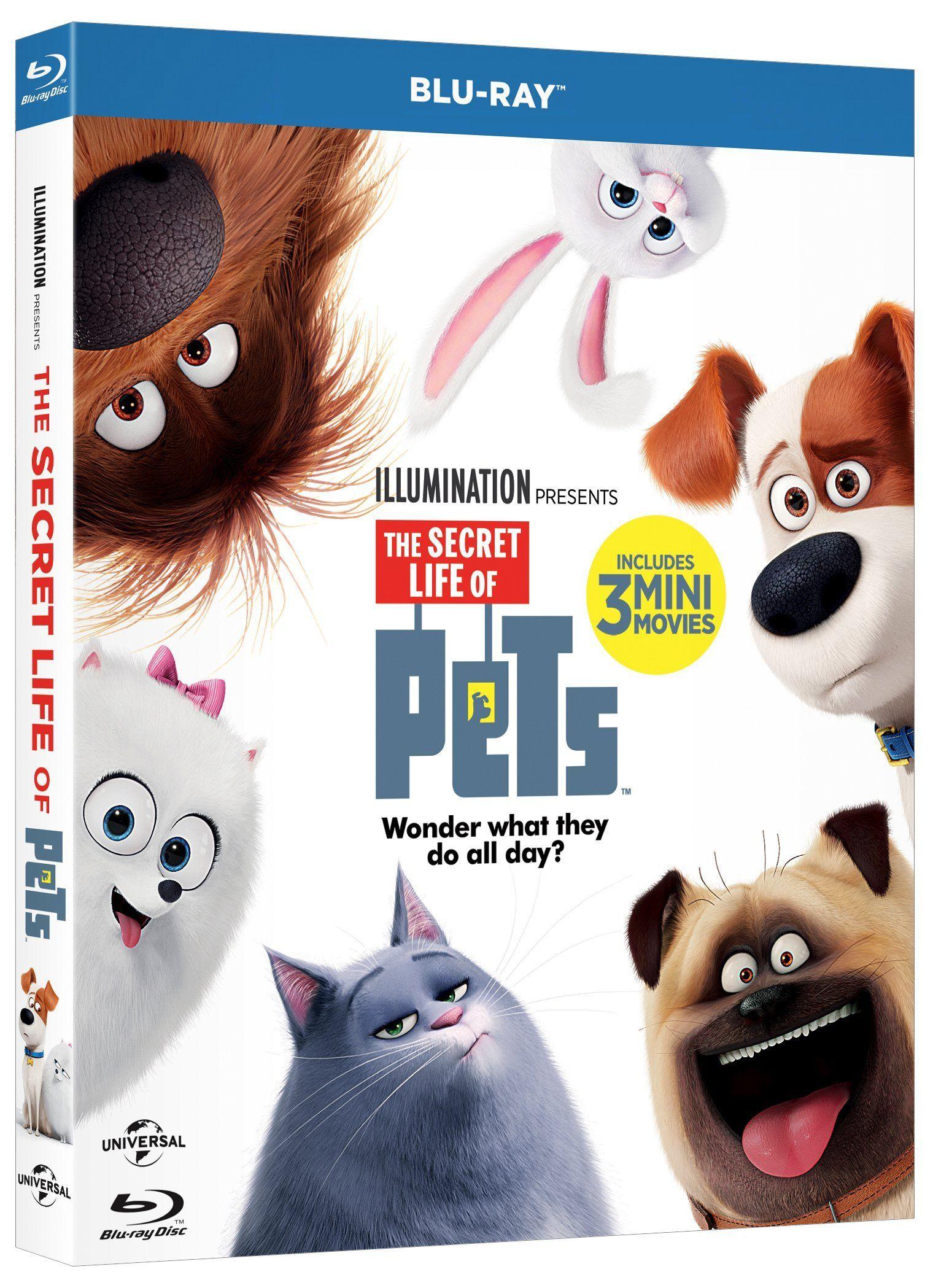 Pets Vita Da Animali Italia Blu Ray Da Vita Pets Animali La Vida Secreta De Tus Mascotas Dvd Peliculas De Animacion