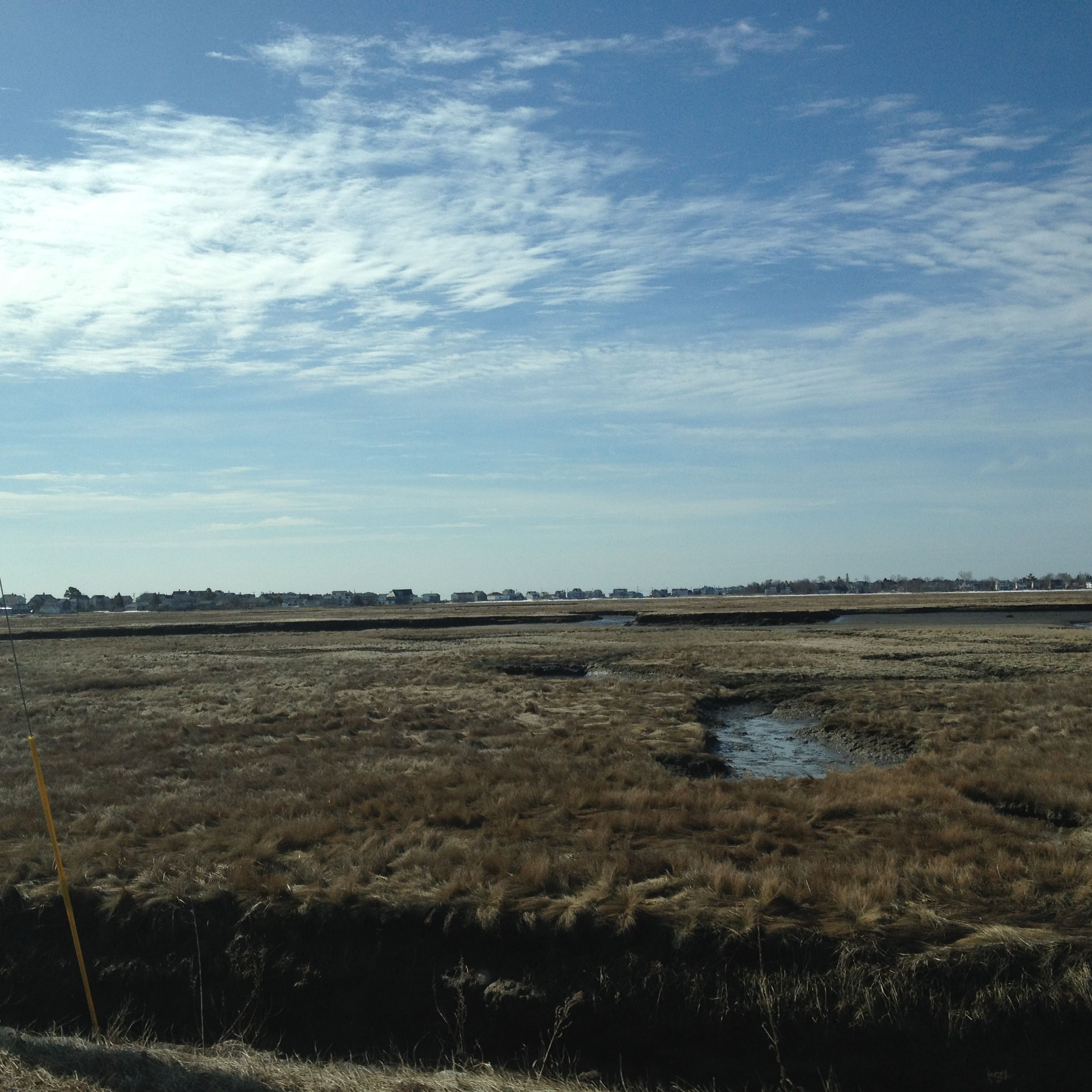 Marshes in Wells... Tide comes in and the tide goes out...the marshes are fascinating!!  April 2015