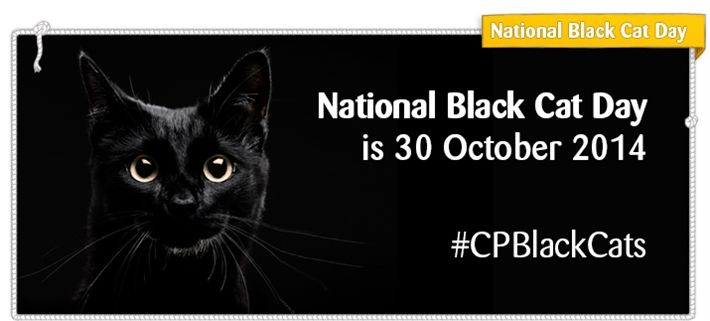 Cats Protection National Black Cat Day National Black Cat Day Black Cat Day Black Cat