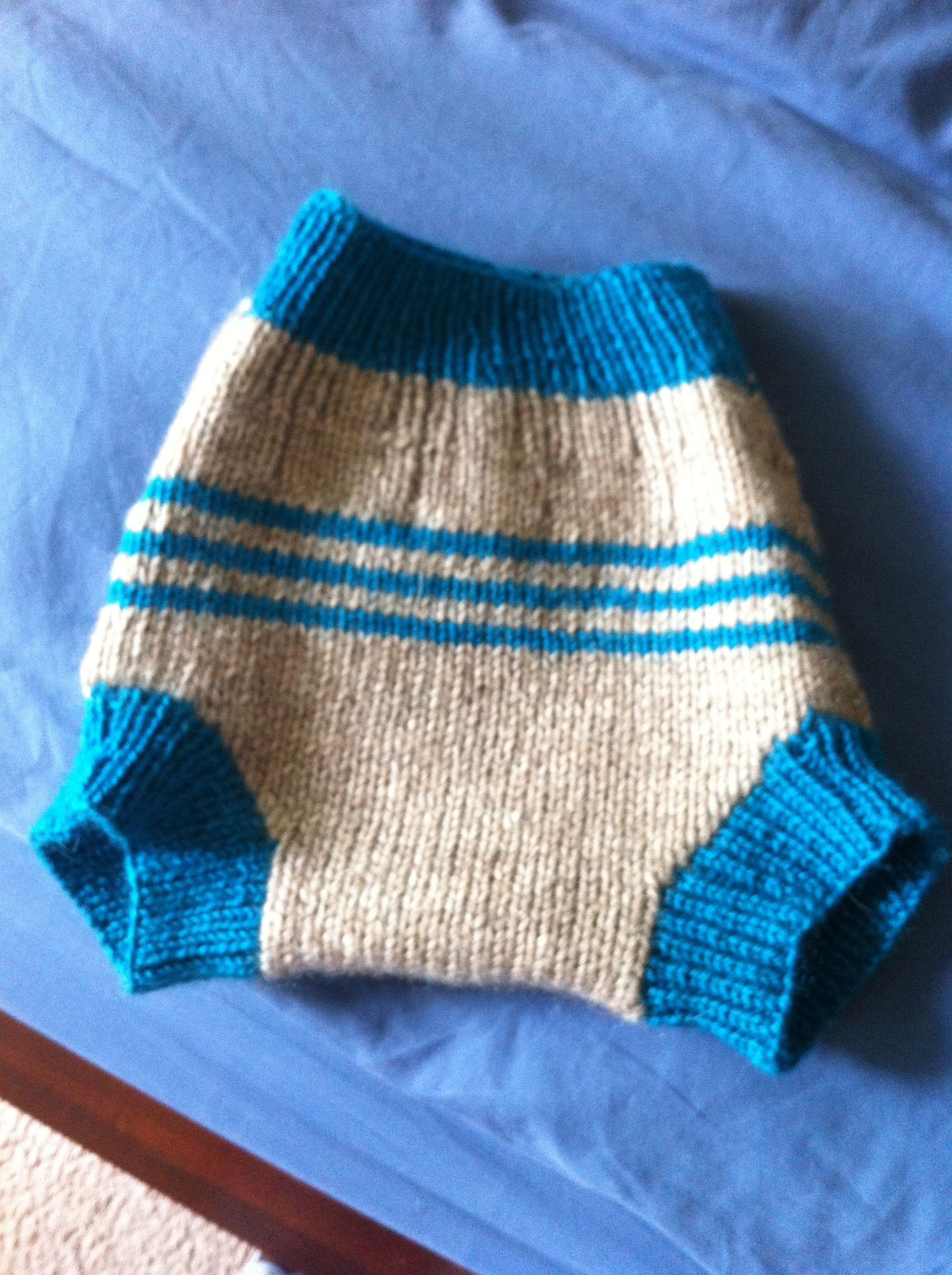 Knit wool diaper cover. It's currently in use and works well but when I clean it next time I'll add in an extra layer where it's needed.  I got the free pattern online somewhere. I really need to save websites.