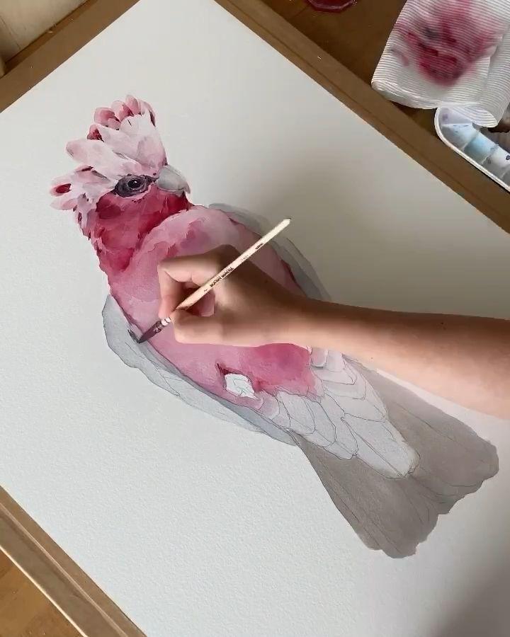 Créez de belles pièces avec des pinceaux CRUELTY FREE