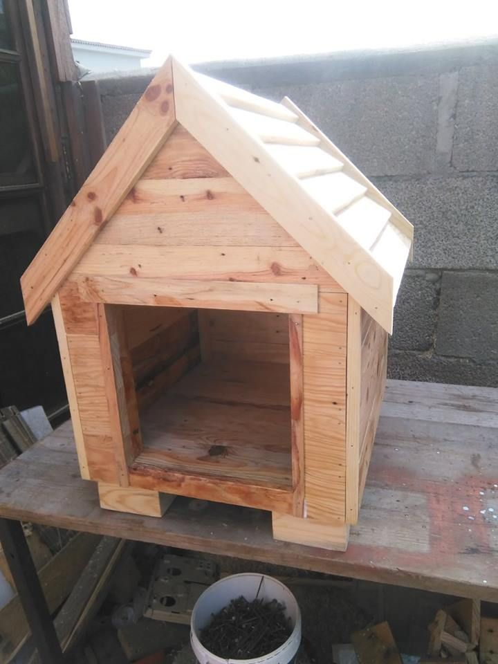 Build a dog house from pallets pallet dog house wooden