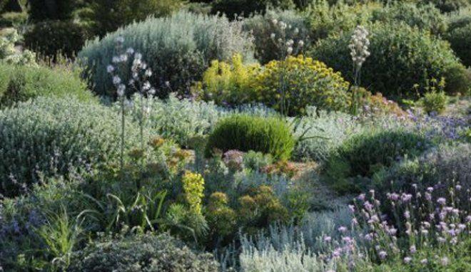 un jardin sec pour un jardin sans arrosage conseils automne et jardins. Black Bedroom Furniture Sets. Home Design Ideas
