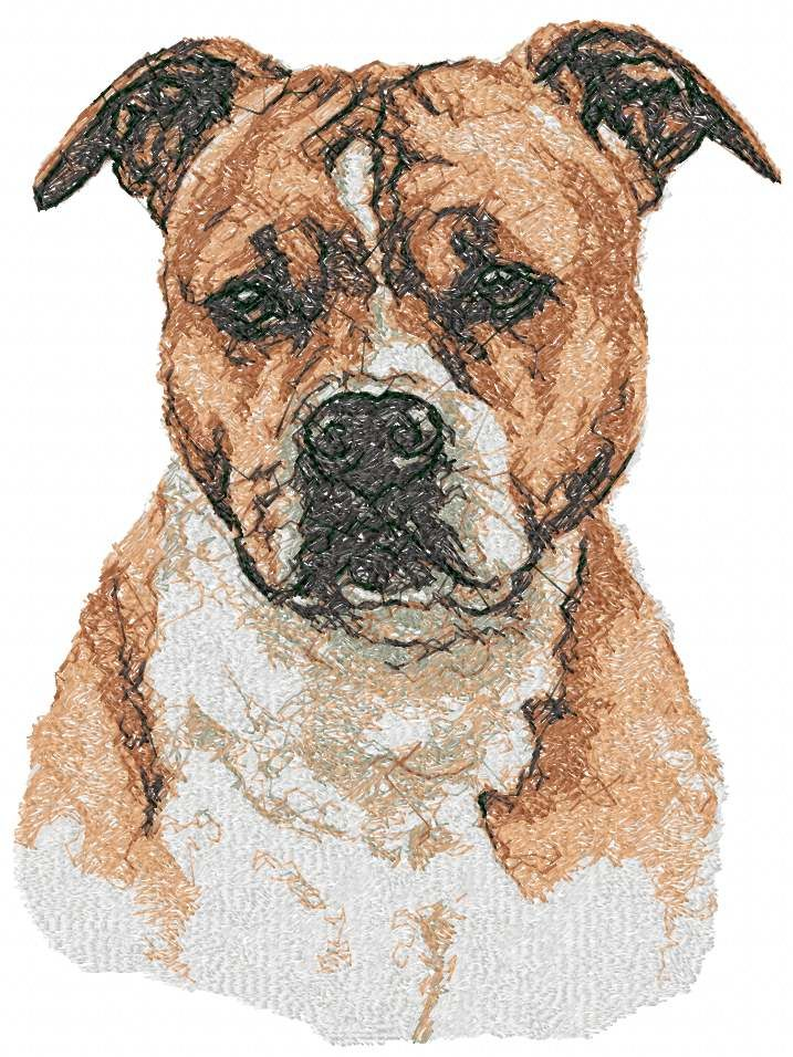 American Staffordshire Terrier Photo Stitch Free Embroidery Design