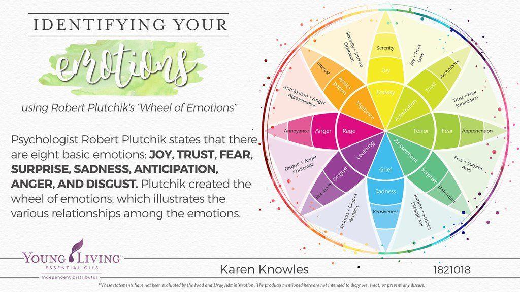 Balancing Healthy Emotions Using Essential Oils - Karen Renee Knowles