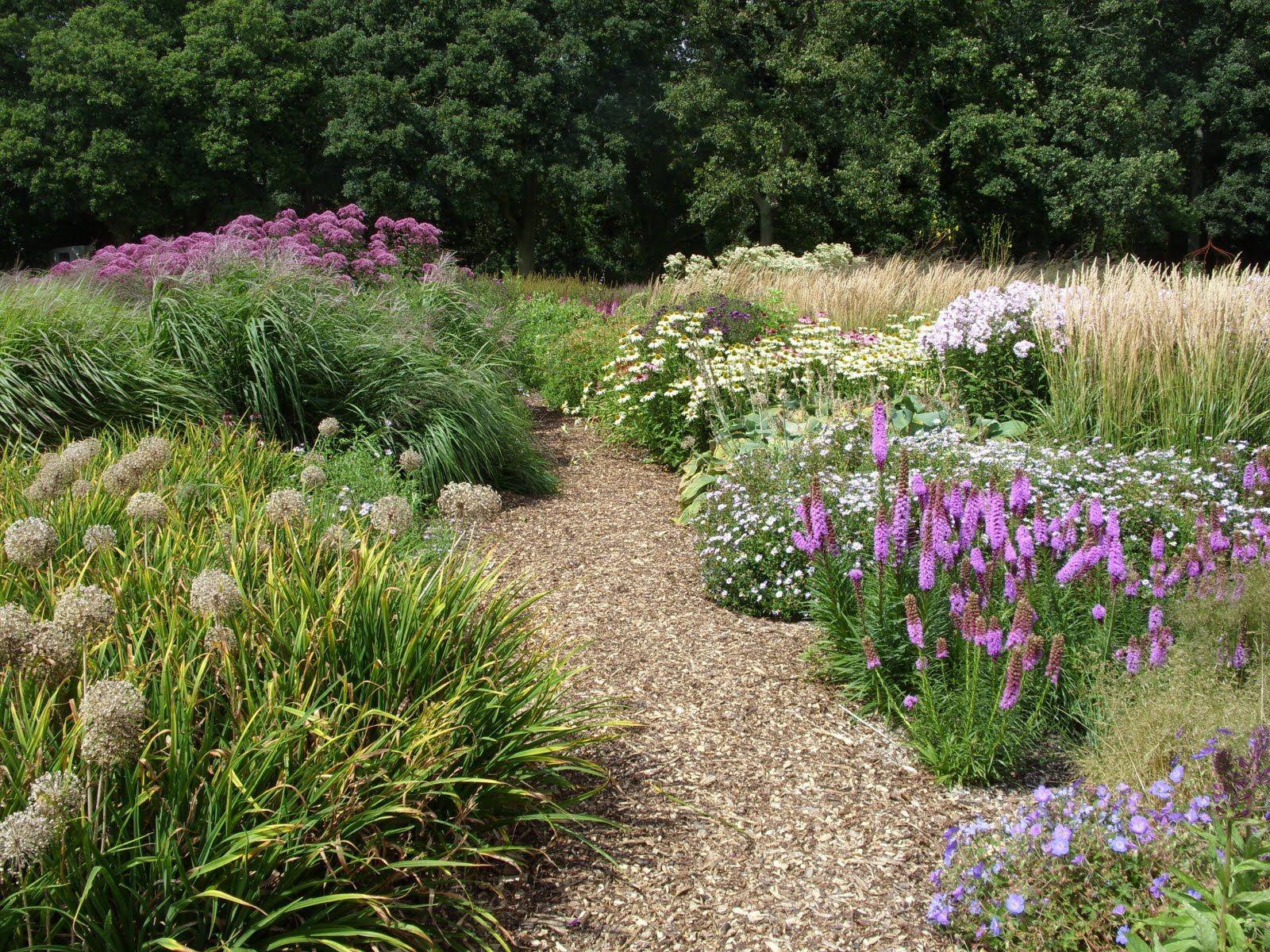 Welsh Wonders Part 1 Garten Garten Ideen Pflanzen