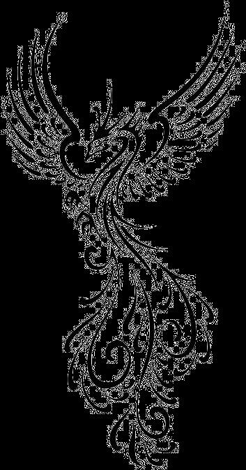 Download Hd Phoenix Tattoo Designs Female Tribal Phoenix Transparent Png Image Nicepng Com In 2020 Phoenix Tattoo Tribal Tattoos Phoenix Tattoo Design