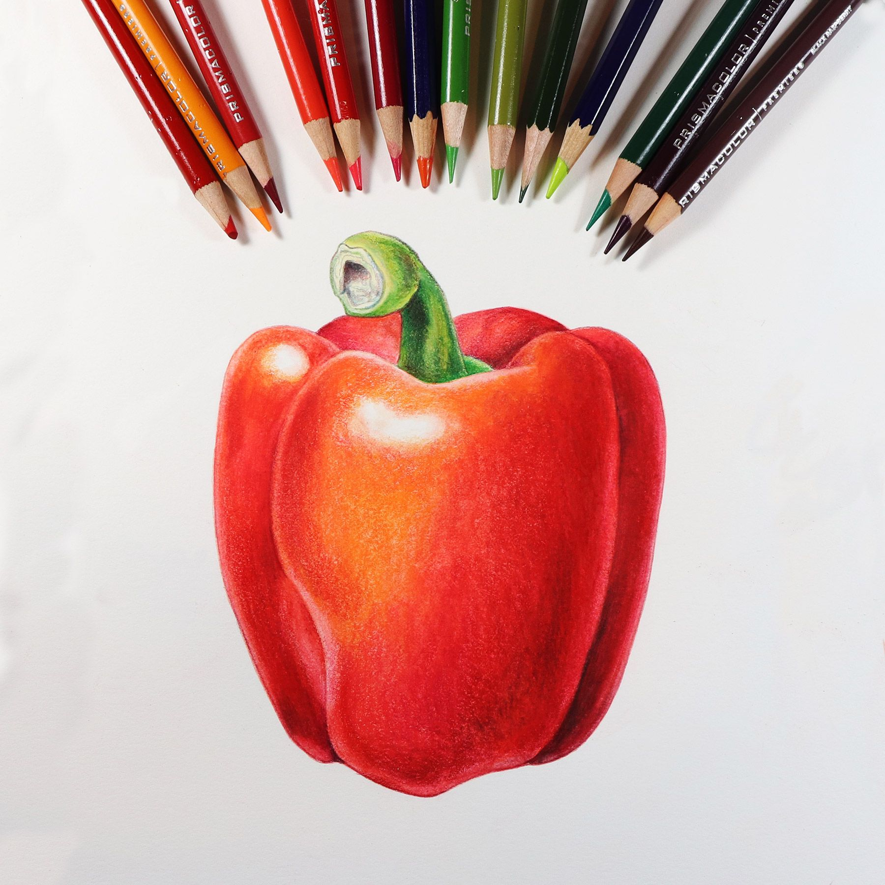 Working On A New Colored Pencil Online Class Color Pencil