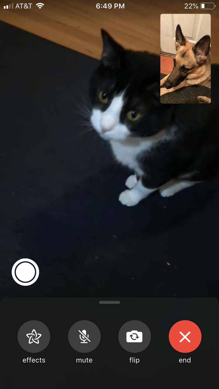 Tucc went on a FaceTime call with holly | interesting pins | Facetime