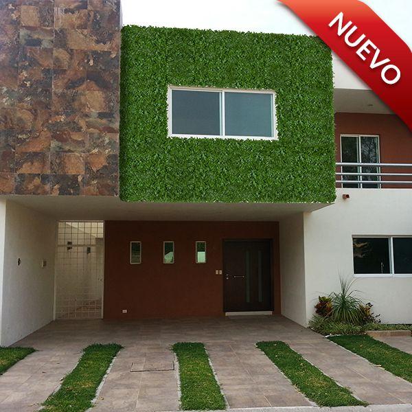Instala t mismo un muro verde sobre cualquier superficie - Muros sinteticos decorativos ...