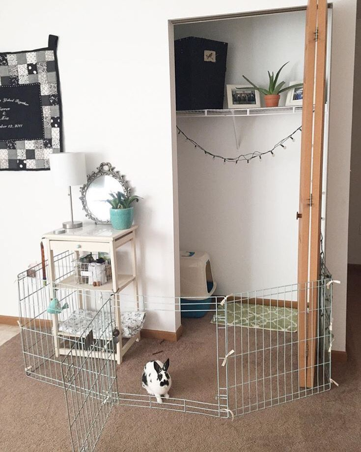 House Rabbit Pen Indoor