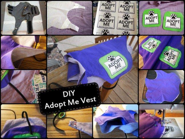 Diy Adopt Me Vest Dogs Diy Projects Dog Vest Diy Dog Fundraiser