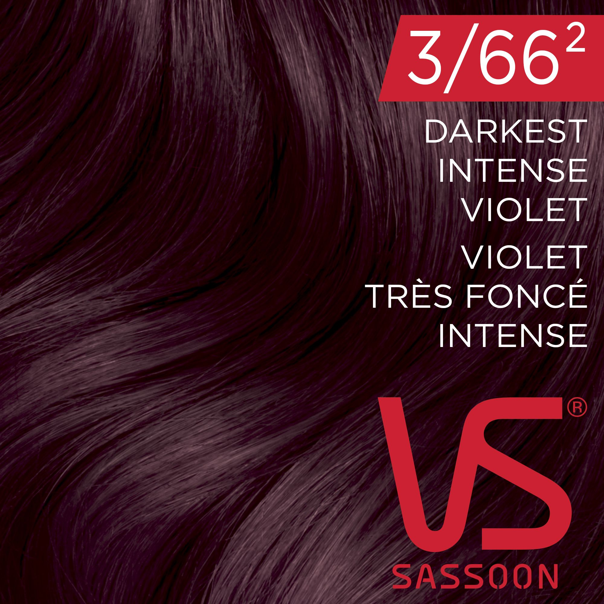 DIY Purple hair color: Vidal Sassoon Salonist 3/662 DARKEST INTENSE VIOLET  Deep amethyst. Aubergine ...