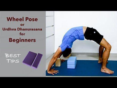 wheel pose or urdhva dhanurasana for beginners  youtube