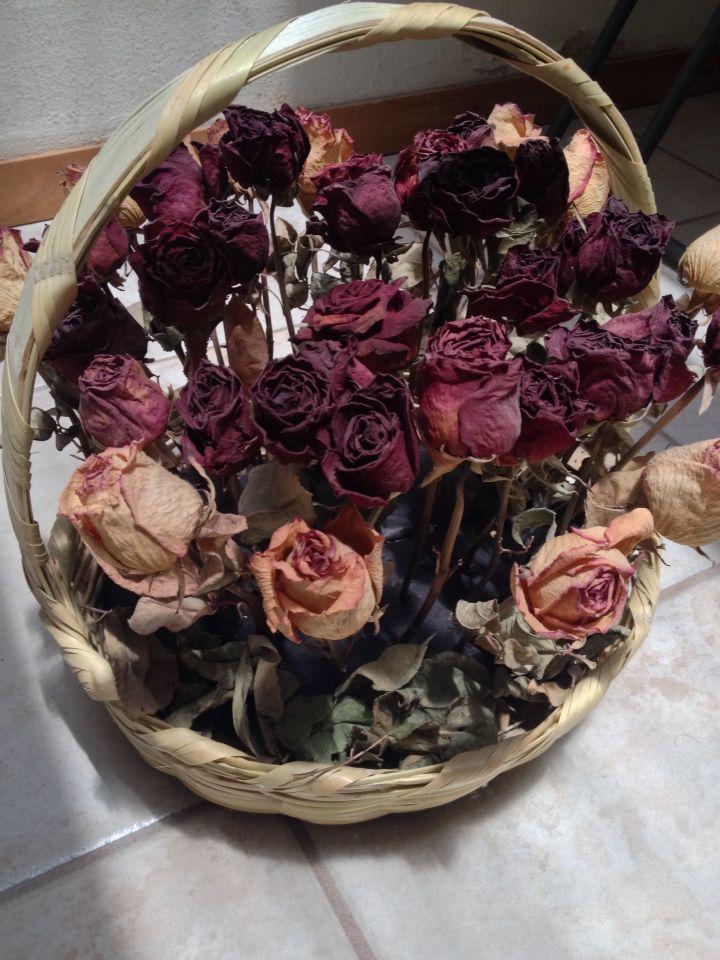 Flores secas Vintage Pinterest Vintage - flores secas