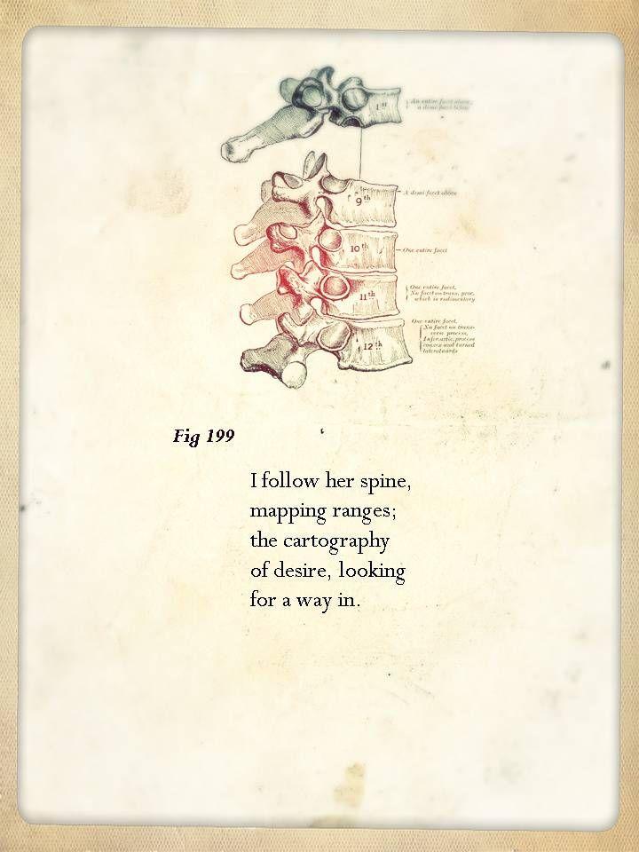 anatomy poems | Rorys Decoration | Pinterest | Anatomy