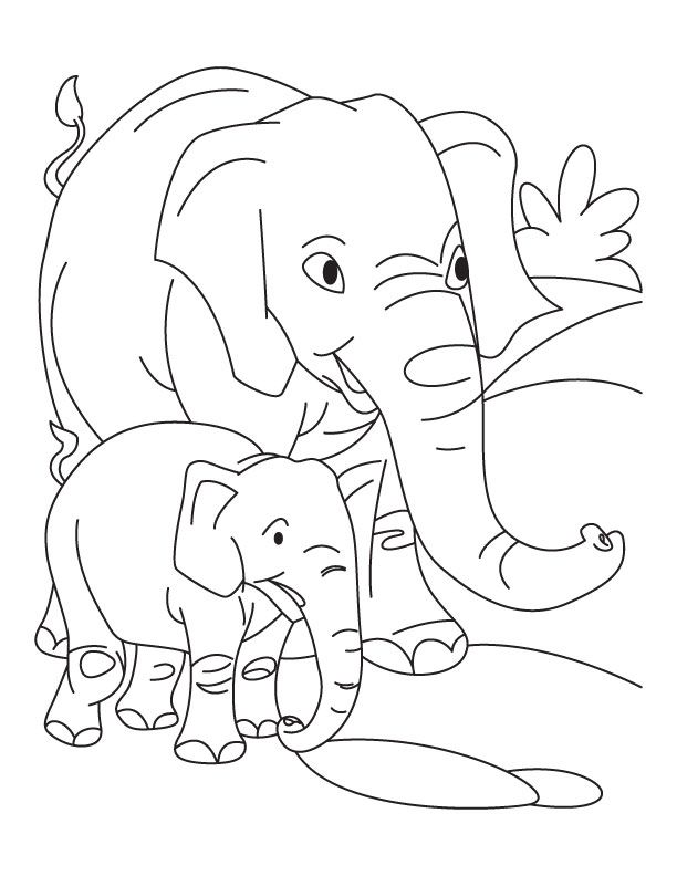 Baby Elephant Coloring PagesKidsfreecoloringNet