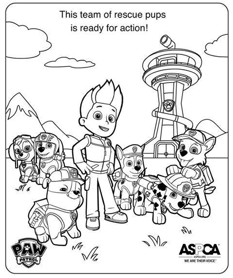 paw patrol coloring pages | Adoption K911 - Quebec Ontario ...