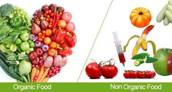 Organic vs Inorganic Foods | organic food in Dubai | Organic