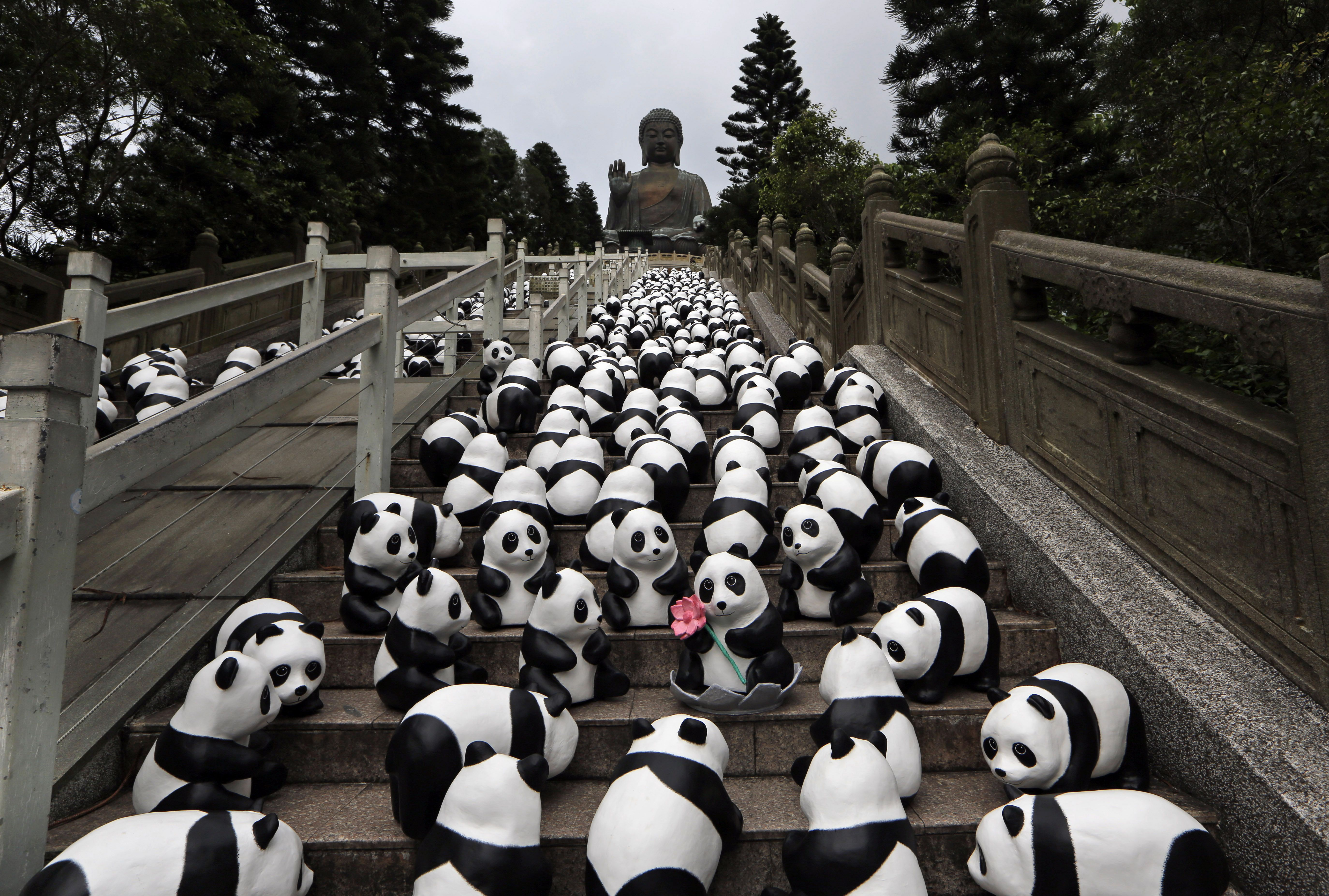 Part Of The 1 600 Paper Pandas Created By French Artist Paulo
