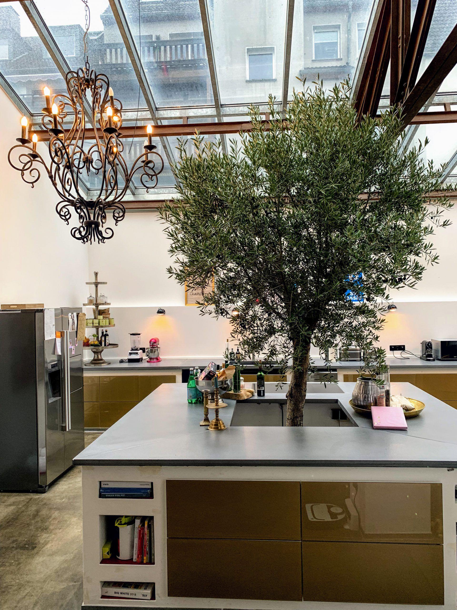 Kuche Modern Designt Mit Kochinsel Arbeitsplatte Moderne Kuche Kuche Mit Insel