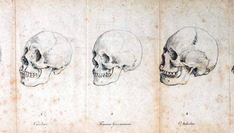 Los mejores libros de Anatomia Humana (Descarga Gratis) | Libros de ...