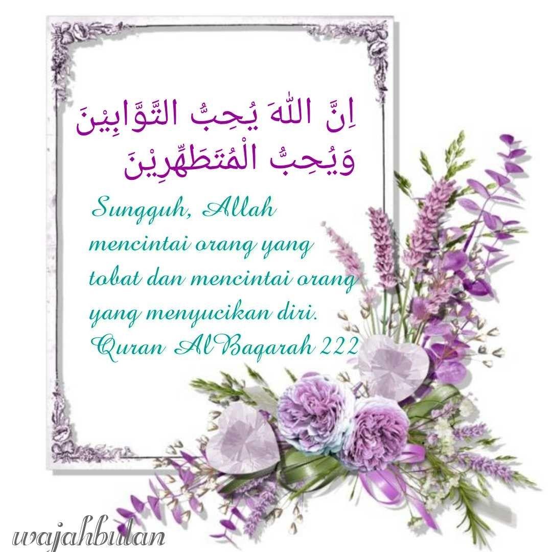 235 Best AlQuran Ayat Gambar Images