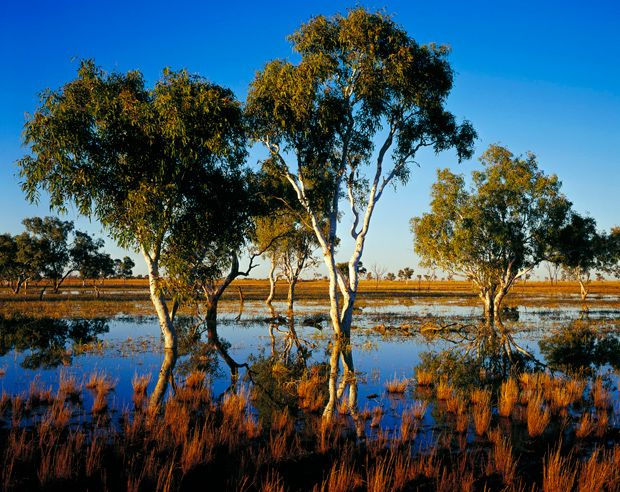 Aussie Deserts Our Outback Scenes Australian Geographic