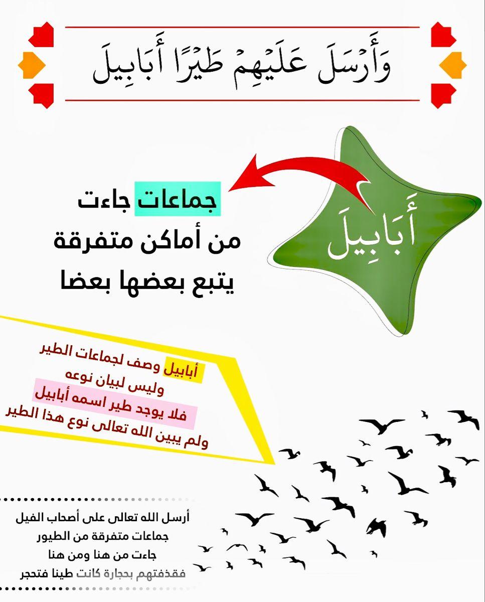أ ب اب یل وحيدة في القرآن في سورة الفيل ٣ أبابيل جماعات متفرقة In 2021 Learn Quran Islamic Phrases Quran Tafseer