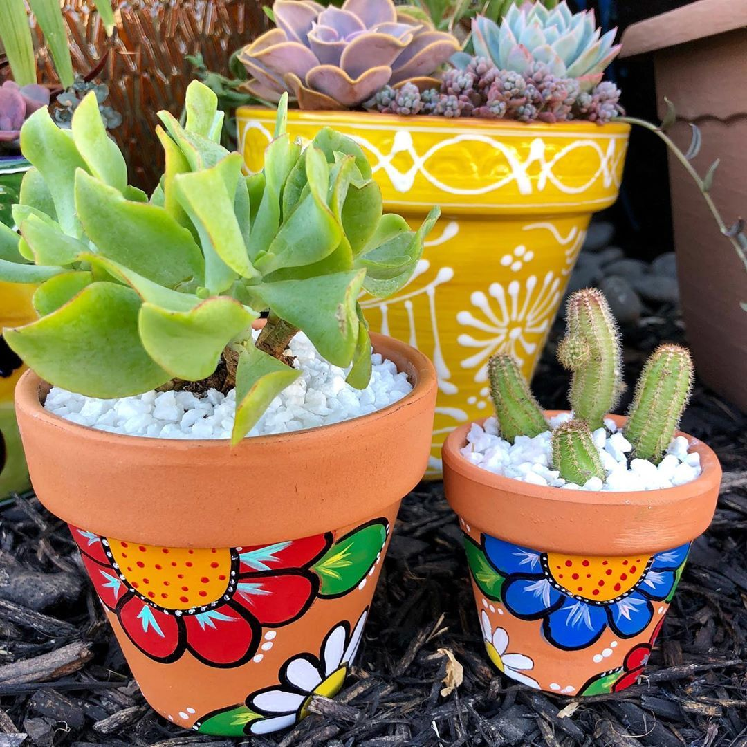 Happy Friday the 13th! I painted these lil Terra Cotta pots recently and finally added some plants. Have a great weekend! I'll be watching Hustlers