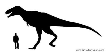 Kids Dinosaur T Rex information its size skeleton coloring