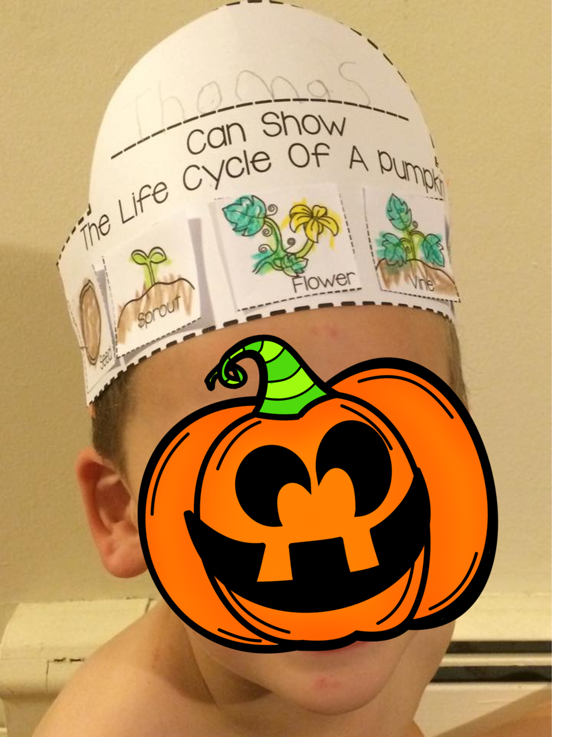Pumpkin Life Cycle Crown Plus Sequencing Cards