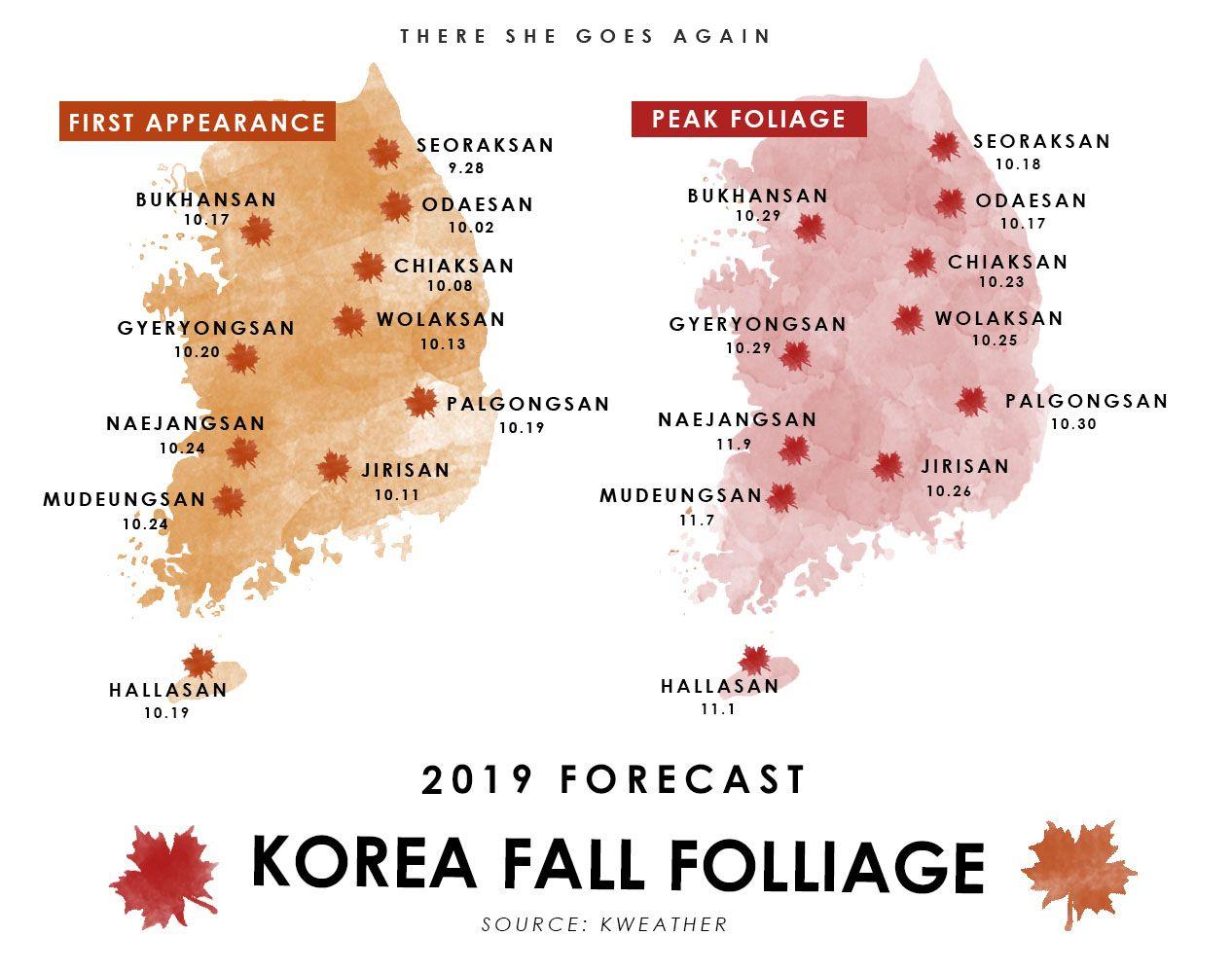 Autumn In Korea 2020 Forecast Food Festivals And More Autumn In Korea Korea Fall Foliage Tour