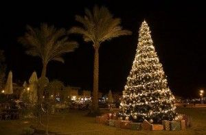 Christmas In Egypt Christmas In Egypt Egypt Christmas Display