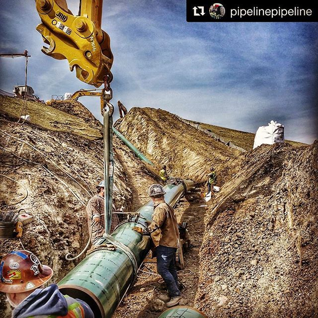 Pipelines Are busy plAces on HAzard Hunt Hump DAys
