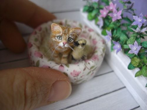 Miniature-Gosling-with-Tabby-Kitten-OOAK-by-OREON-Dolls-House-cat-1-12