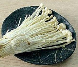 Inilah Resep Cara Memasak Jamur Enoki Tumis Putren Spesial Rumahan Stuffed Mushrooms Food Tofu