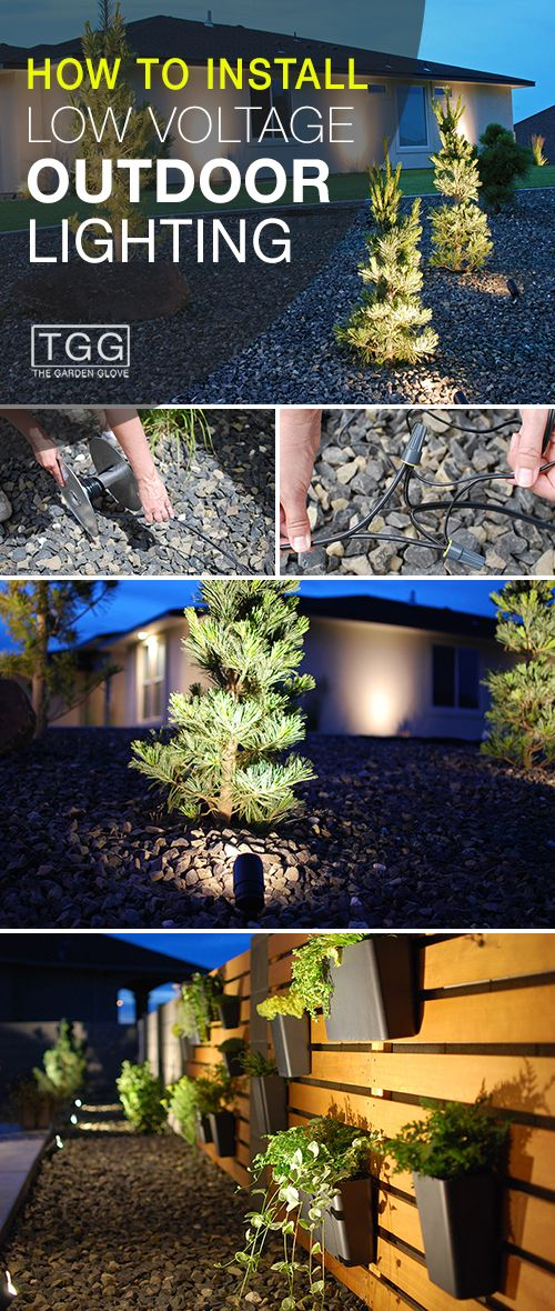 How To Install Low Voltage Outdoor Lighting The Garden Glove Diy Outdoor Lighting Landscape Lights Diy Outdoor Landscape Lighting