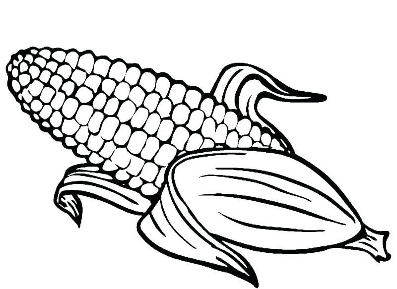 paginas para colorear de maiz dibujos para colorear del maiz | fall ...