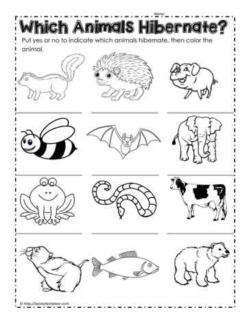 hibernation coloring pages preschool shapes - photo#4