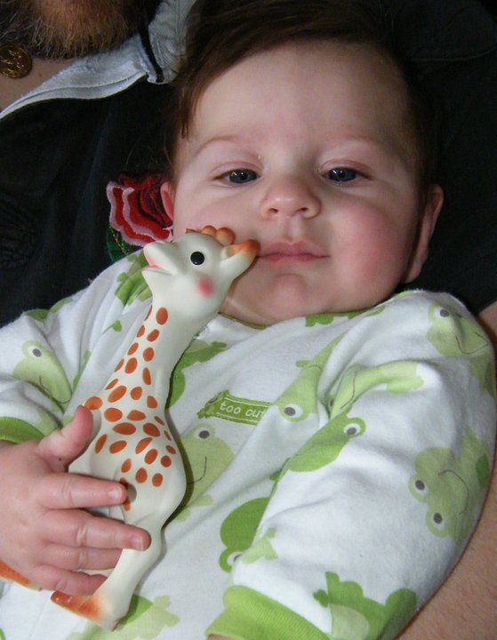 Jules the Giraffe.