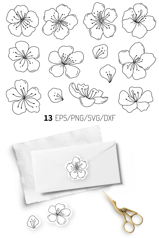 Cherry Blossom Svg : cherry, blossom, Cherry, Blossom, Floral, Vector, Flowers, Files, Flowers,, Flower