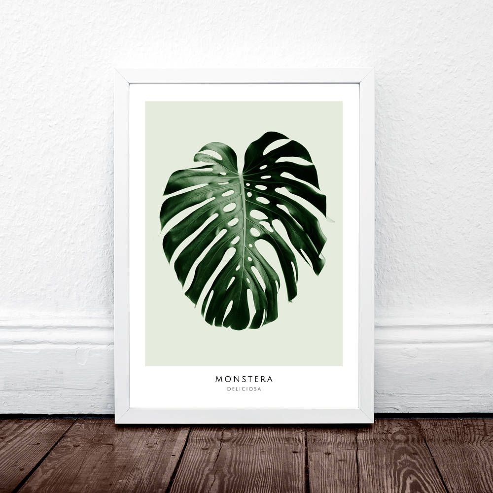 monstera leaf print tropical decor monstera deliciosa monstera printable monstera leaf monstera print monstera decor trend 2017