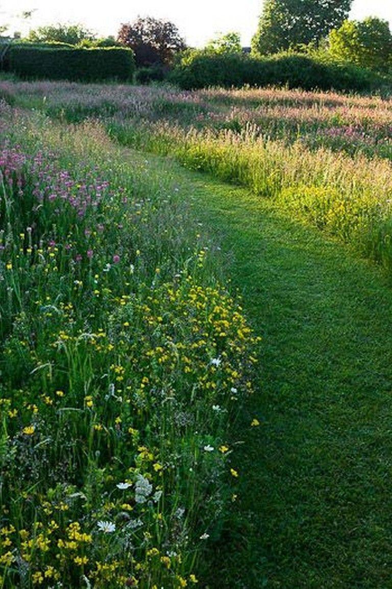 Photo of 25 Beautiful Wildflower Field Ideas Our Garden Meadow Garden #beautiful #field #…