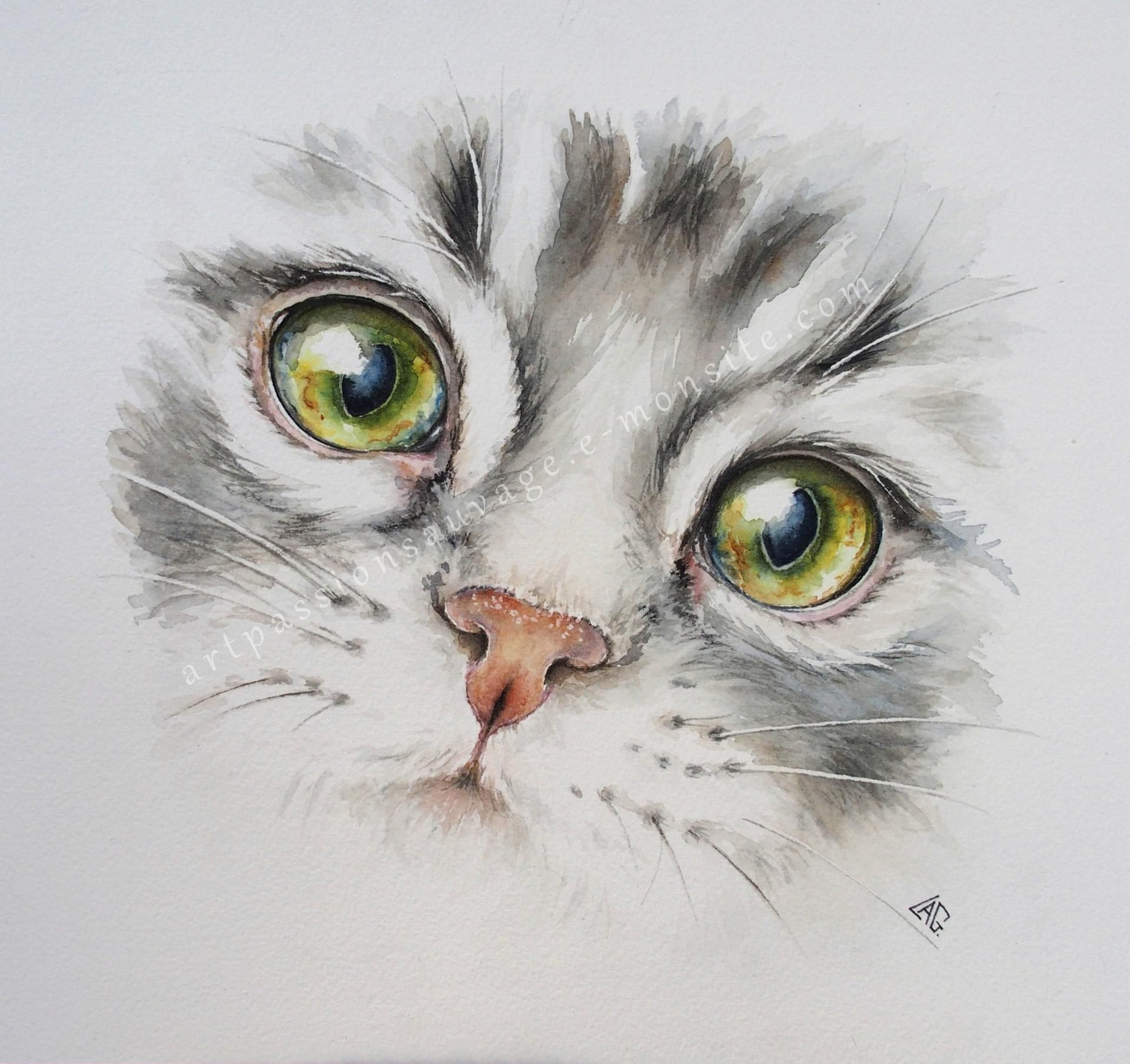 Aquarelles Animaux Aquarelle Chat Pinterest Watercolor Cat