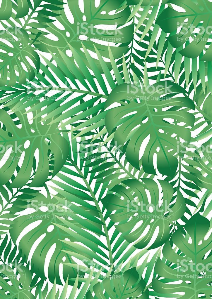 Green Tropical Palm Tree Leaves Background Royalty Free Stock Vector Art Tropical Leaves Illustration Tropical Leaves Tropical Leaves Pattern
